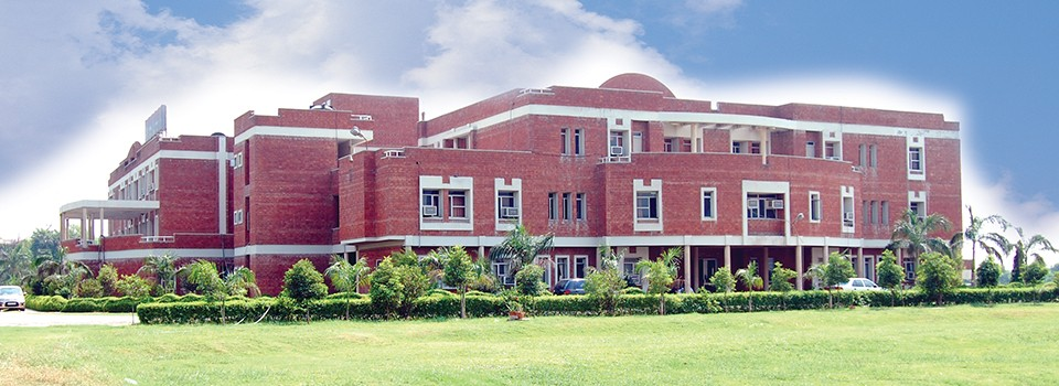 Apeejay institute of technology school of management Greater Noida